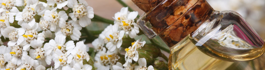 How is Essential Oil Extracted?